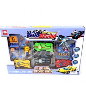 Гоночный трек Wild Racing Speed Racer