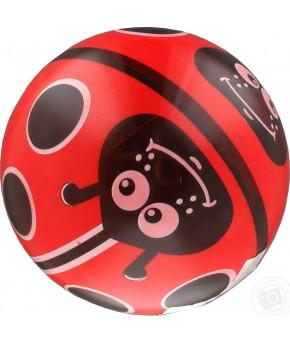Мяч Dema-Stil с рисунком большой, 230 мм